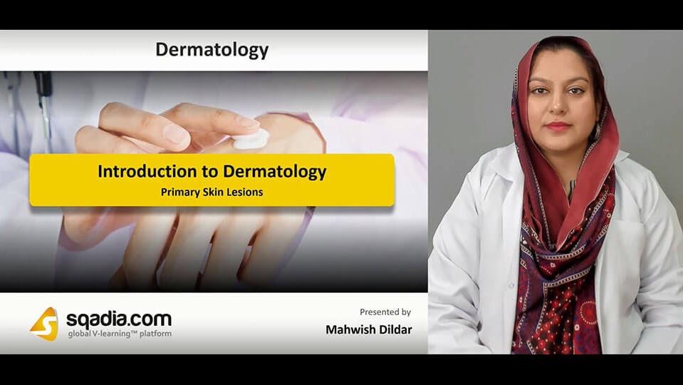 Data 2fimages 2fl3vi6egdr4kw356iskb8 190227 s2 dildar mahwish primary skin lesions