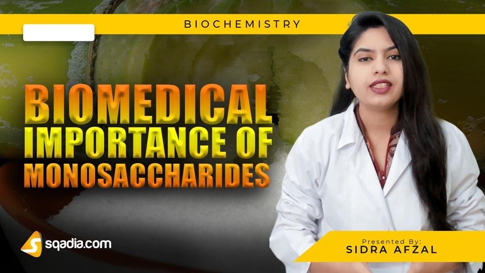 Data 2fimages 2fdntcduu7qtkqouplr7w1 190301 s0 afzal sidra biomedical importance of monosaccharides intro