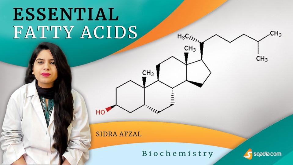 Data 2fimages 2fqdghtfurqko8sjaemqsn 190403 s0 afzal sidra essential fatty acids intro