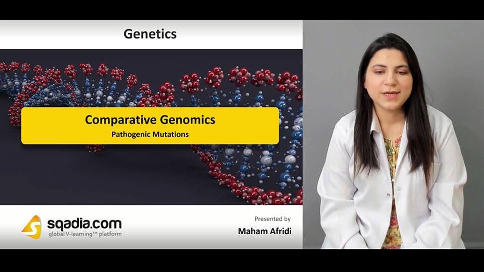 Data 2fimages 2fkv19xperbghhmhjzp7gx 190413 s3 afridi maham pathogenic mutations