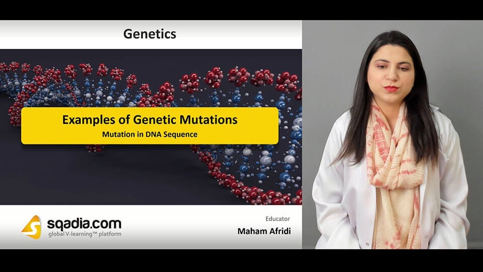 Data 2fimages 2f36mxikbzqwgwsr2dpao2 190413 s2 afridi maham mutation in dna sequence