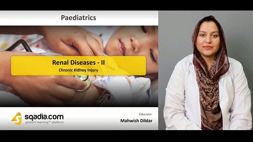 Data 2fimages 2fazhevkaorzktpntlspbr 190417 s3 dildar mahwish chronic kidney injury