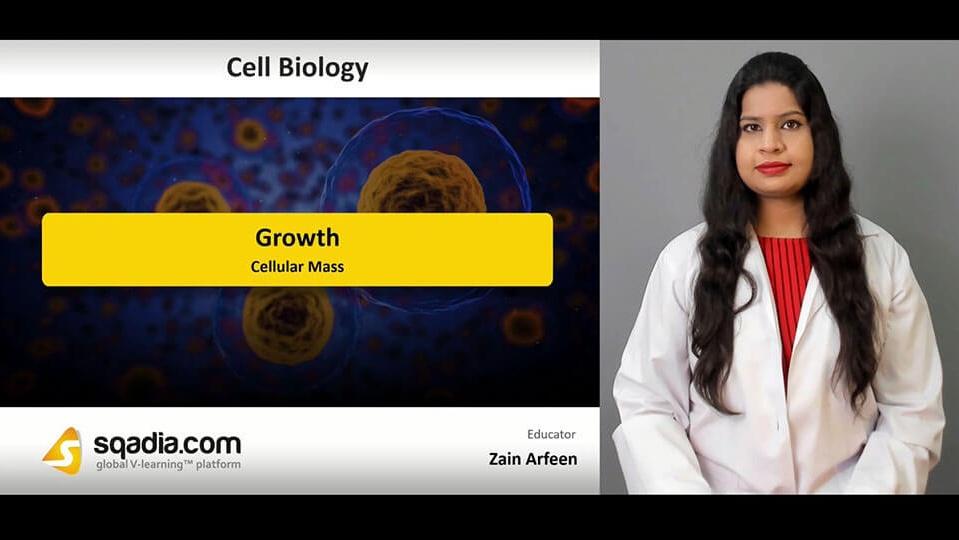 Data 2fimages 2fzjxmfwcsd2cebmsfpxy6 190426 s2 arfeen zain cellular mass