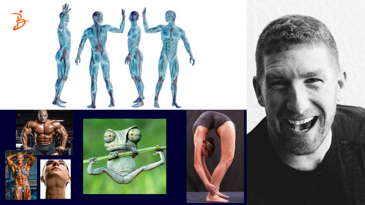 <p>Do dancers need to know about anatomy</p>